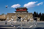 暑期特惠 山海关古城、求仙入海处、鸽子窝等2日跟团游*免费接送,纯玩无购物
