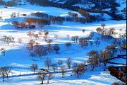 乐吧|塞北雪乡乌兰布统冬季越野车深度冰雪之旅