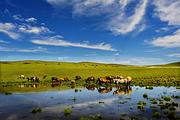 魅力内蒙古 北京出发内蒙古希拉穆仁草原 响沙湾沙漠市内精品双飞四日跟团游