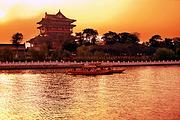 青岛休闲踏青去哪玩   兴化千垛菜花、夜游凤城河、溱湖湿地大巴二日游w