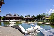 北京到陕西西安、兵马俑、华清池、法门寺、乾陵、明城墙 大明宫遗址双卧5日游