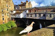 探秘英国十日 温莎城堡+爱丁堡+剑桥+牛津+比斯特购物+莎翁故居+2天自由
