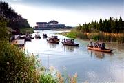 泰州二日游2日巴士跟团游溱湖湿地、口岸雕花楼、柴墟老街、宿泰州CMC假日酒店、赠送一餐小龙虾宴
