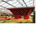 潍坊中华牡丹园+寿光蔬菜博览会一日游  每周六周天发团 纯玩团w