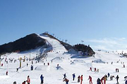 沈阳白清寨滑雪一日游
