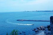 成山头+海驴岛精品纯玩一日游(含中餐)