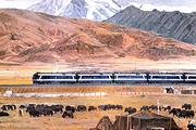 全国-拉萨火车单程硬卧自由行(去程硬卧+接站+1晚四星酒店)西藏旅游自由行