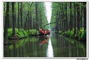 李中水上森林、夜游凤城河、梅兰芳纪念馆、溱湖湿地二日游w
