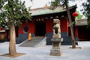 少林寺纯玩一日游/郑州到少林寺跟团游/少林寺+三皇寨+塔林+武术表演一日游