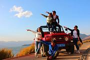 广州塱头古村、红山村、美术馆、艺术馆1日巴士游4-6人小团、专业摄影师跟拍、复古村落、至美乡村、自然与艺术