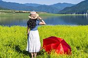 丹东绿江村1日游、油菜花摄影天堂、边境风情、鸭绿江与浑江交汇、原生态自然风光