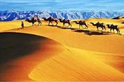 激情沙漠通湖草原 品质团中卫沙坡头+通湖草原+高庙保安寺汽车2日游