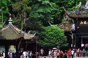 看熊猫!都江堰+青城山+熊猫乐园纯玩一日游(熊猫小吃+3环包接)