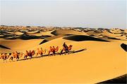 内蒙古呼和浩特旅游响沙湾一日游( 纵享之旅100%纯玩>含门索+中餐+车费