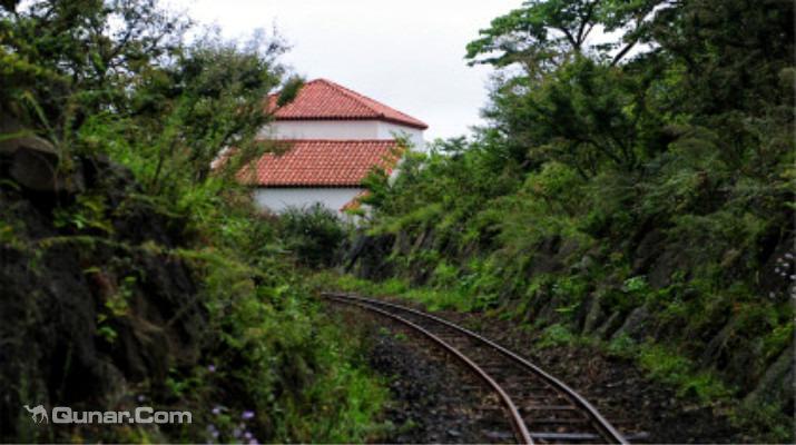 韩国-济州岛-ecoland英式森林小火车