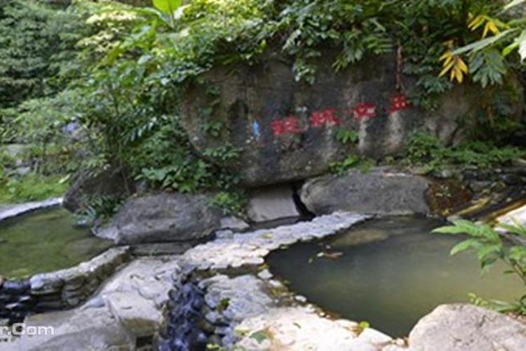 樱花谷森林温泉旅游