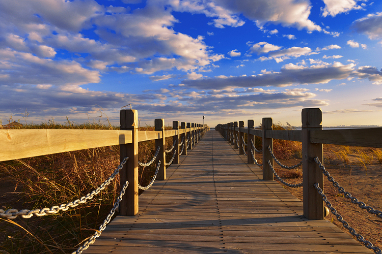 呼兰河口湿地风景区旅游