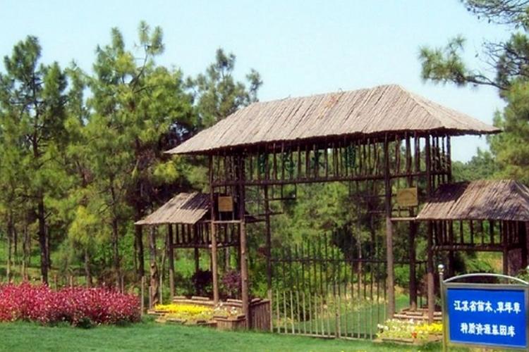 禾木农博园旅游