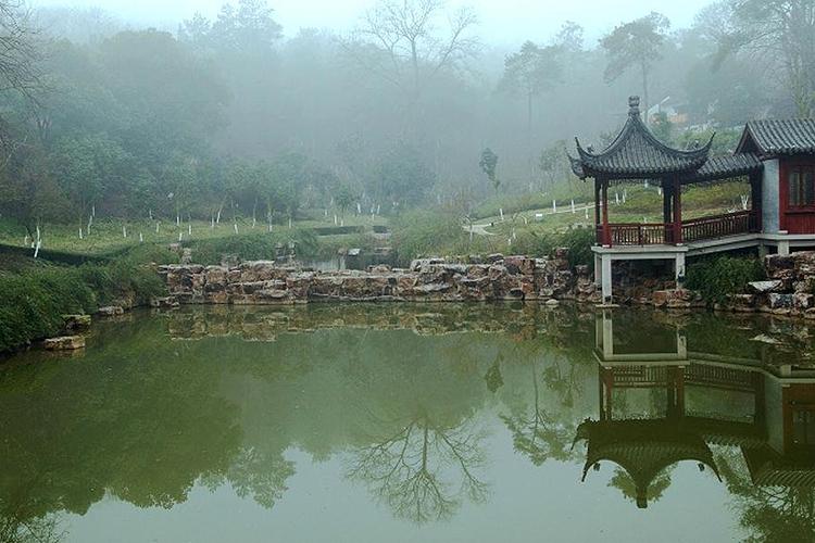 映山湖生态园旅游
