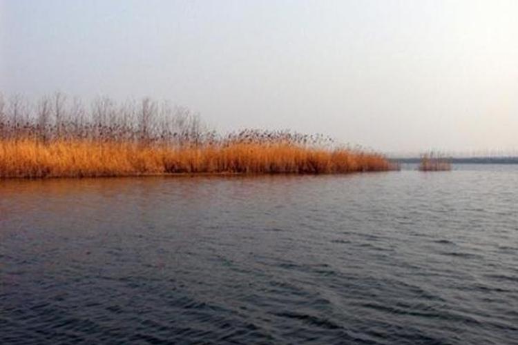 沱湖风景区东临104国道,南接304省道,五河县城北3.5公里.