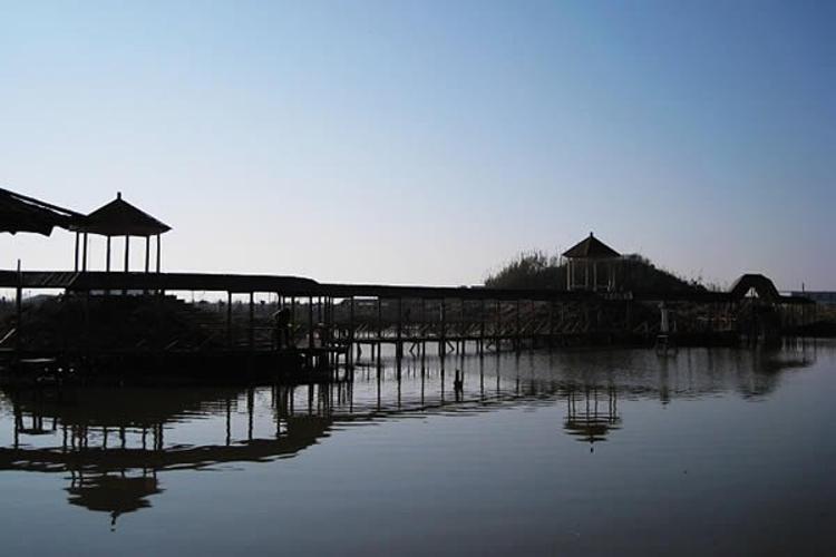 盈康江海生态休闲园旅游