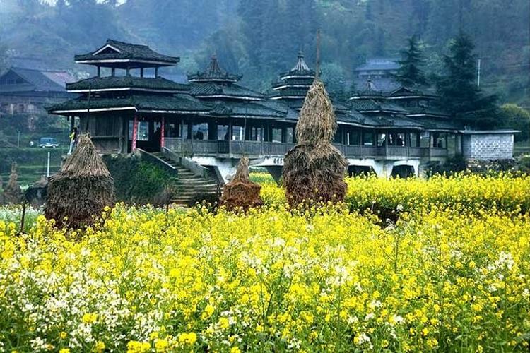 柳州大桥农业旅游区旅游
