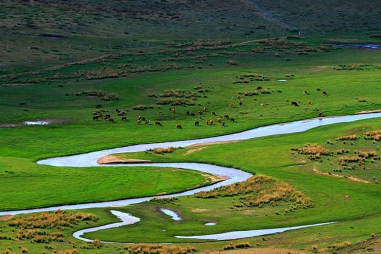 锡林河旅游