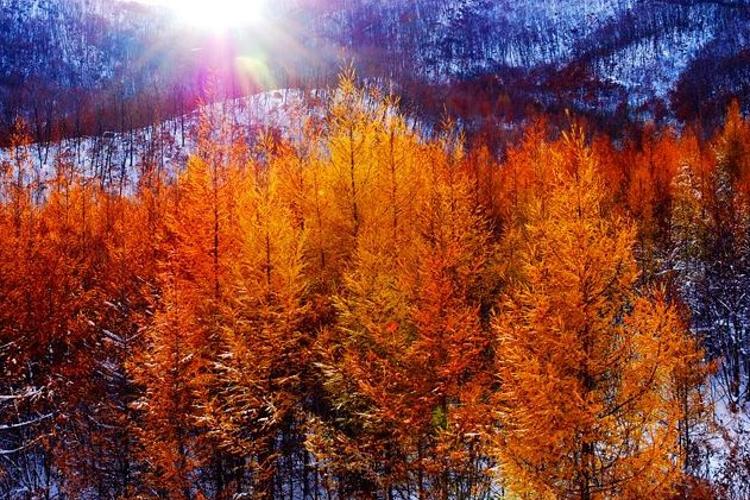 亚布力国家森林公园旅游