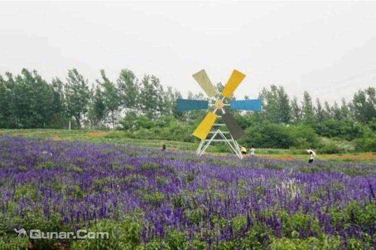 汤山翠谷生态旅游度假村旅游