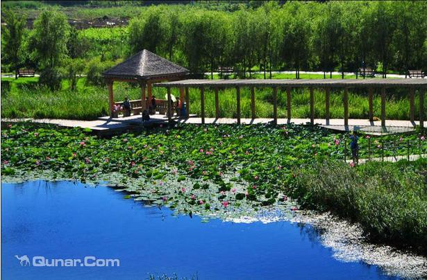 松花江湿地旅游