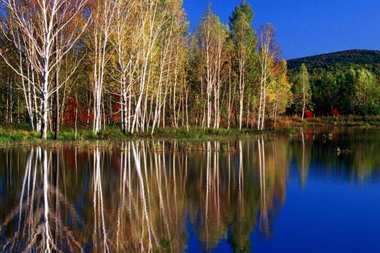 溪水国家森林公园旅游