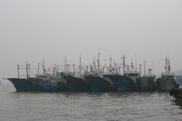 沈家门渔港旅游