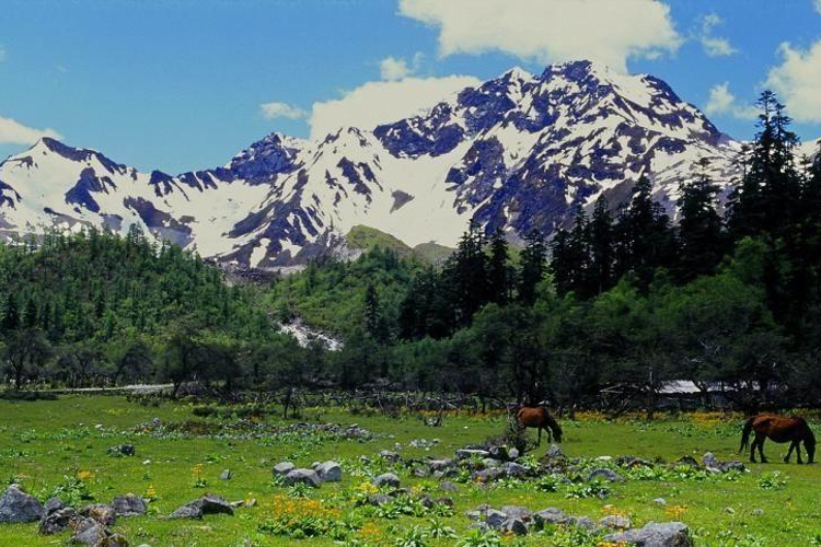 岗乡自然保护区旅游