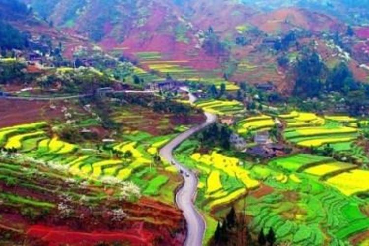 四寨村旅游