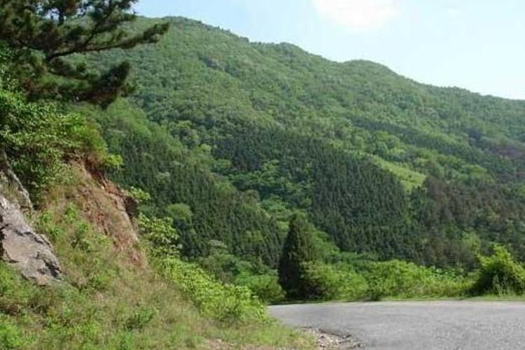文峰山公园旅游