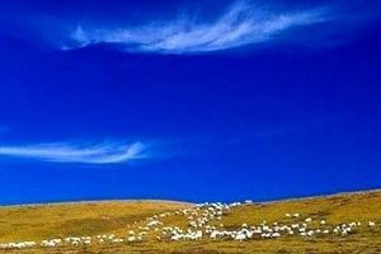 玉树藏族自治州旅游