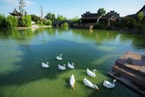 约会春天住宁波九龙湖开元度假村亲子家庭、情侣出游 包含九龙湖、十七房门票