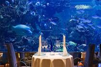 一日游 成人票迪拜当地游 帆船酒店 军随餐厅午餐