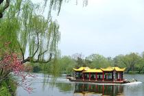 春节献礼✔江南美景✔乌镇+西湖+枫桥+宋城+外滩 苏州杭州上海华东深度6日游
