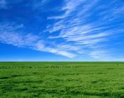 北京出发到木兰围场乌兰布统+锡林郭勒巴彦高勒经典草原双汽3日游赠送烤全羊