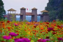 精选周边︱广州花都2天纯玩︱惊魂玻璃桥+牛鱼嘴原始森林公园+品百鸟归巢宴