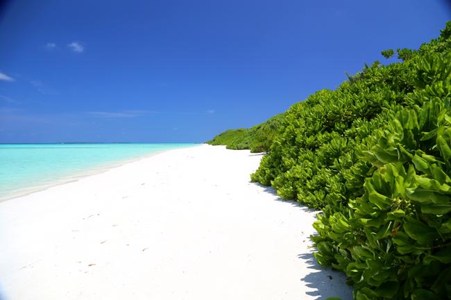 《马尔代夫★月桂岛★5钻行程》蜜月首选★两晚沙屋两