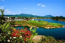 踏青赏花跟团游,李中水上森林、泰州老街、溱湖湿地、纯玩二日游,青岛成团