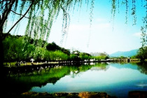 无锡出发(杭州西湖游船、花港观鱼、西溪一日游)0自费景点。