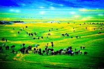 带你去看最蓝的天-新疆 乌鲁木齐 五彩滩、魔鬼城、天池、吐鲁番双卧10日