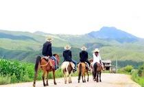 丽江拉市海茶马古道+拉市海湿地公园真纯玩一日游(骑马+划皮划艇+可订当日)