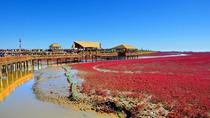 盘锦-盘锦红海滩廊道景区当日往返自由行