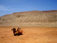 新疆:乌鲁木齐双飞8日游歌舞新疆/天池、吐鲁番、喀纳斯白沙湖(领略大自然的鬼斧神工,走入世界四大文明交汇之地,在葡萄架下品西域美食 产品编号:115782)咨询热线:4008-902-291