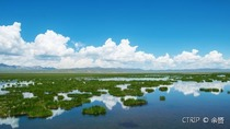 兰州+拉卜楞寺+桑科草原+若尔盖+郎木寺+扎尕那6日自由行·饱览甘南藏族迷人风景 来一场视觉盛宴 双飞