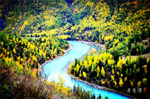 喀纳斯当地旅游北屯市接送东方瑞士喀纳斯湖-卧龙湾-神仙湾纯玩二日游